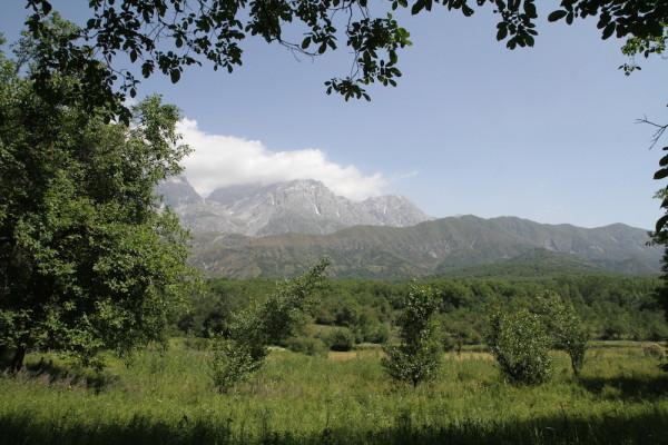 Arslanbob omgeving