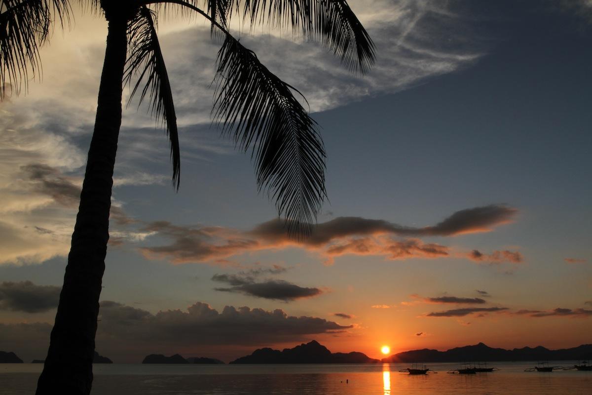 El Nido Palmboom sunset