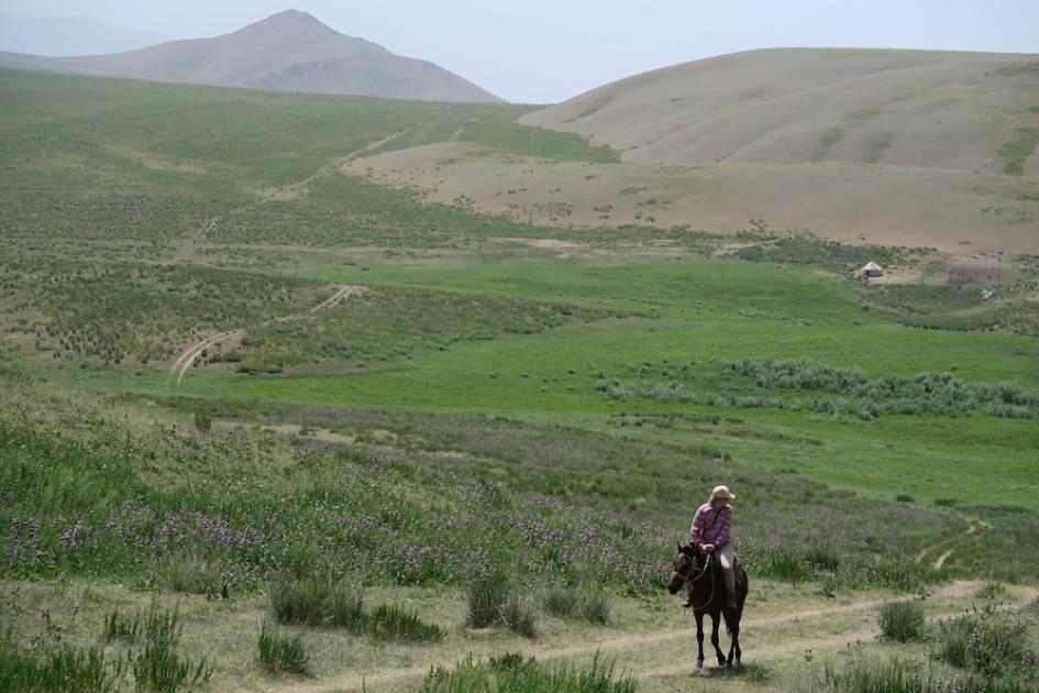 Marloes op paard